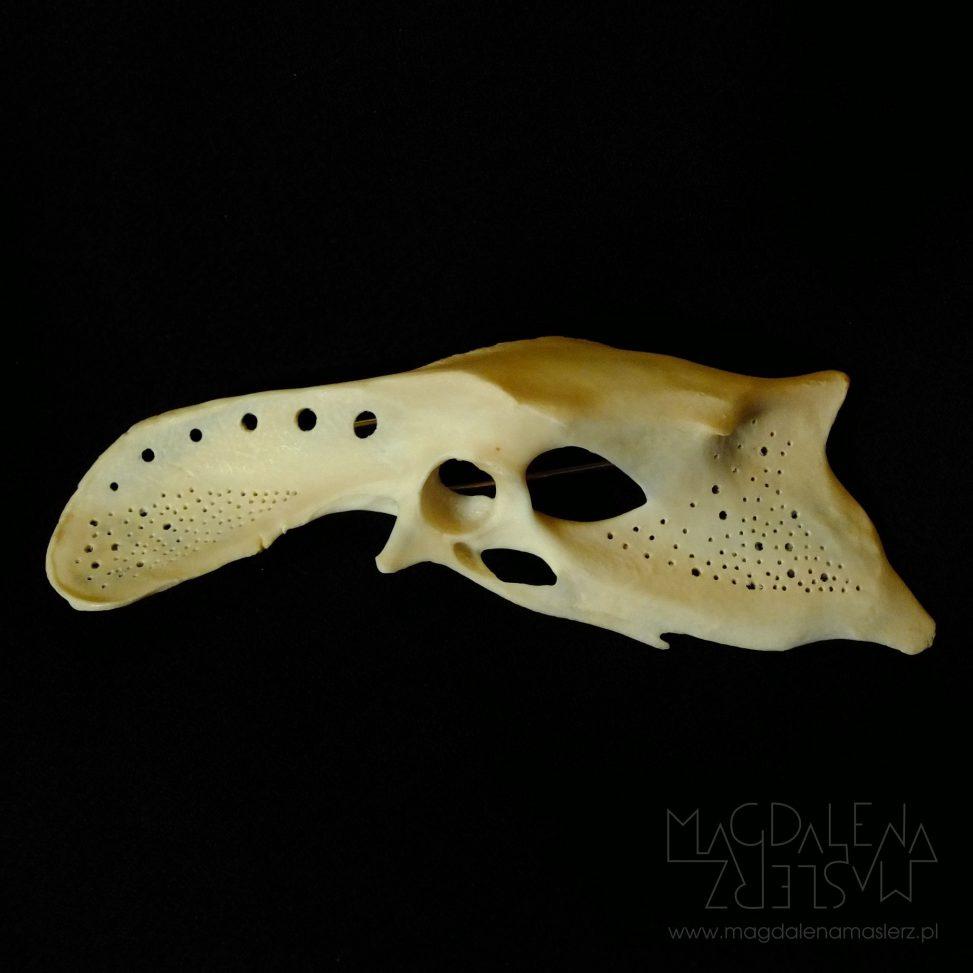 broszka z kości